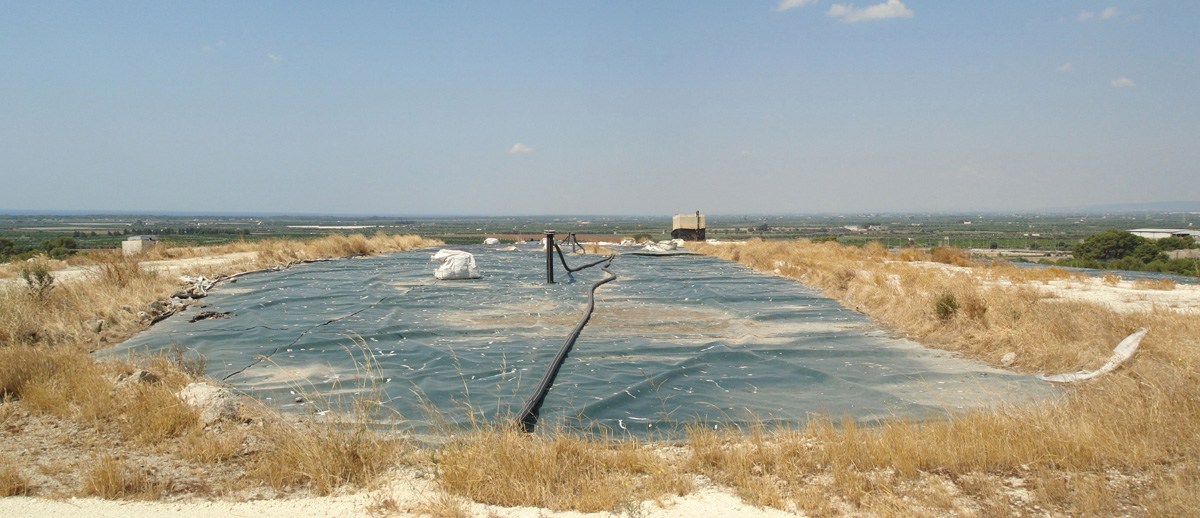 Leachate Phytoremediation </br>Plant on a Landfill