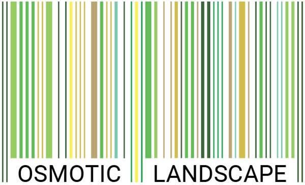 osmotic-landscape